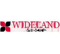 Wideland Motor Group